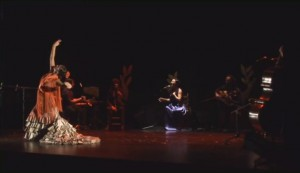 Literary Flamenco